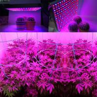 1000 Watt RED Led Grow Lamp For Cannabis And Marijuana , Aluminum Body Manufactures