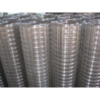 Hot - dip galvanized welded wire mesh, 1/2 x 1 / 2 for Fence,Cages Manufactures