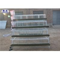 Galvanized Egg Laying Hens Cages With 128 Capacity In Kenya PVC Water Pipe Manufactures