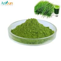 Organic Green Barley Grass Juice Extract Powder Food / Pharmaceutical Grade Manufactures