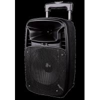 Wireless Microphone Outdoor Portable Speakers With Rechargeable Lithium Battery Manufactures