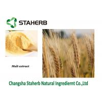 Baking Natural Food Additives Malt Extract powder 98% Hordenine Manufactures