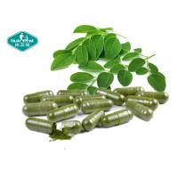 500mg Moringa Oleifera Capsules / 100% Natural Appetite Suppressant For Weight Loss Manufactures