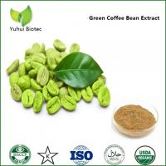 green coffee extract capsules,kosher green coffee bean extract,green coffee extract powder Manufactures