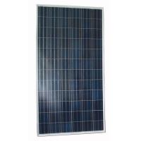China Multicrystalline Solar Panel 290W (PLM-290P) on sale