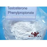 Medicinal Fat Burning Steroids Testosterone Propionate For Women CAS 1255-49-8 Manufactures