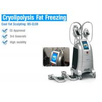 Cryolipolysis slimming equipment cool body sculpting body slimming weight loss cryolipolysis machine Manufactures