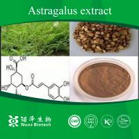 China Manufacturer for Astragalus mongholicus extract on sale