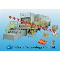 top quality egg tray machine Manufactures