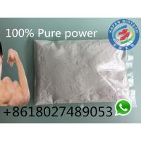 Male Sex Hormones Testosterone Undecanoate Treatment of Androgen Deficiency and Infertility Manufactures