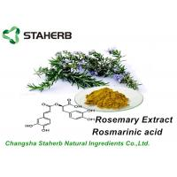 Anti - Aging Organic Rosemary Extract Rosmarinic Acid 5%,10%,15% By HPLC Manufactures