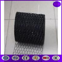 Black Vinyl Chicken Wire Mesh Panels for Cages ,decoration and construction Manufactures