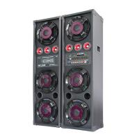 Dual Equalizer Portable Bluetooth PA Speakers For Concert , Active Outdoor Speakers Manufactures