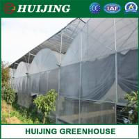 The Cheapest Agricultural/Commercial/Industrial Plastic Film Greenhouses Manufactures