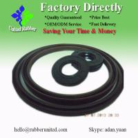 2013 hot sell double lip TC oil seal in NBR material (High Precision!) Manufactures