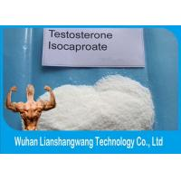 China Muscle Gain Bodybuilding Testosterone Isocaproate Cas 15262-86-9 wholesale