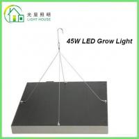 Quality 45 Watts Grow Light Hydroponic LED Grow Light 35W Square Panel With Color Red & for sale