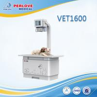 China High frequency X-ray system VET1600 for pets radiography on sale