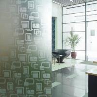 Modern Opaque Decorative Glass Etched Frosted Glass Partitions For Shower Room Manufactures