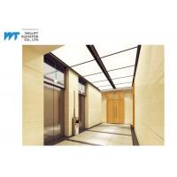 2 Sets Luxury Passenger Elevator High Effect And Energy Saving Running Manufactures