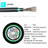 Outdoor 2~288 core Optical Fiber Cable GYTY53 Loose Tube Stranding Manufactures