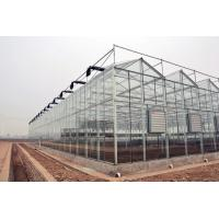 Section 4m Commercial Glass Greenhouse Exquisite Beautiful Galvanized Steel Frame Manufactures