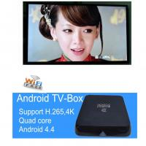 mini pc Support H.265 Quad core  Amlogic S805 Android 4.4 tv box Manufactures