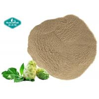 China 100% Natural Freeze Dried Noni Fruit Powder Noni Fruit Powder for Healthy Body Weight on sale
