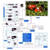 PH14 LED AD. LED Display Manufactures