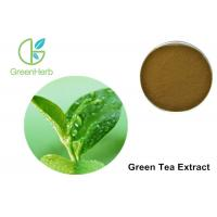 China Egcg Green Tea Extract Weight Loss 40%  EGCG Brown Yellow Powder on sale