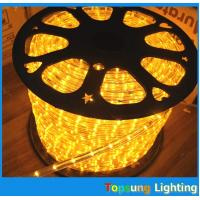 led flexible rope lights 24/12V 1/2'' 2 wire battery powered duralights Manufactures