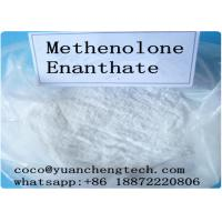 China Anabolic Muscle Building Injections Methenolone Enanthate Primobolan For Gym Users on sale