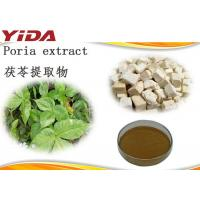 Poria Cocos Extract Natural Weight Loss Powder Brown Yellow Color For Body Slimming Manufactures