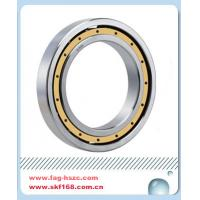 INADeep Groove Ball Bearing Manufactures