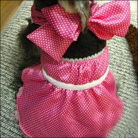 China Large / Small Formal Cute Princess Customized Dog Dresses with Bowknot on sale