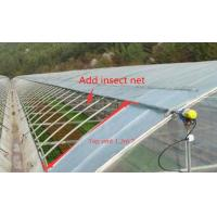 Good Ventilation Polyethylene Film Greenhouse With Manual / Electric Windowing Equipment Manufactures