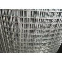 China Bird Cage Galvanized Welded Wire Mesh Roll Hot Sale Galvanized Netting Roll on sale
