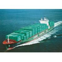 China Shipping Agent, Freight Agent, Freight Forwarder, Logistics, Transport on sale