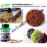herbal medicine grape seed extract free samples 95% opc --Vitis vinifera L Manufactures