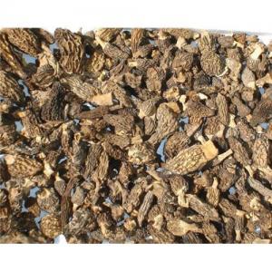 China Morels mushroom on sale