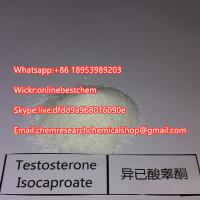 China Testosterone Anabolic Steroid Powder Testosterone Isocaproate CAS 15262-86-9 for Bodybuilding on sale