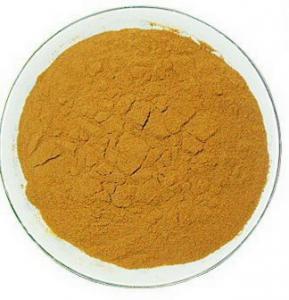 Glycyrrhiza glabara/Licorice Root Extract / Radix Glycyrrhiza Extract with Glycyrrhizic Acid Powder Manufactures