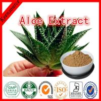 China Aloe Extract/   AloePerryi Extract powder /   aloe vera P.E on sale