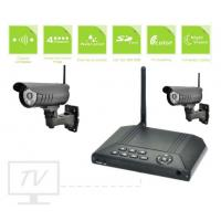 Pir Sensor Remote Video Surveillance Systems 700Tvl Night Vision Metal Shell Manufactures