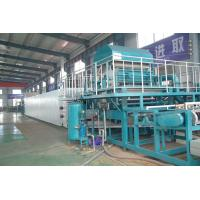 China Fully automatic Paper Pulp Fruit Tray Production Line Paper Pulp Molding Machine on sale