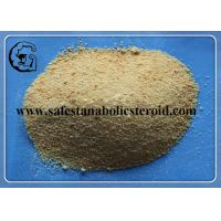 99% Light Yellow Trenbolone Base Muscle Bodybuilding Steroid Powder CAS 10161-33-8 Manufactures