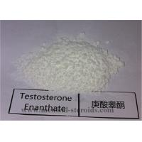 99.5% Purity USP Standard Steroid Testosterone Enanthate CAS 315-37-7 for Bodybuilding Manufactures
