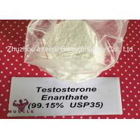 Keeping Young Anabolic Steroid Test E Steroids Testosterone Enanthate CAS 315-37-7 Manufactures