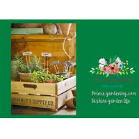 Silver Rustproof Garden Landscape Staples With Zinc Coated Nameplates Manufactures