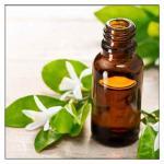 Neroli Petitgrain Essential Oil,Orange Flower essential oil,Citrus aurantium oil Manufactures